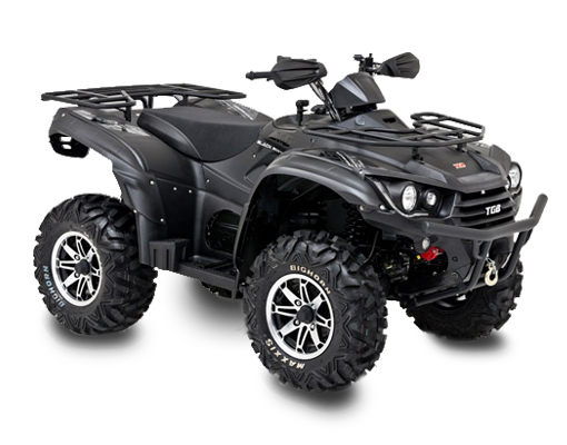 Blade 600 se efi 4x4 Black Edition